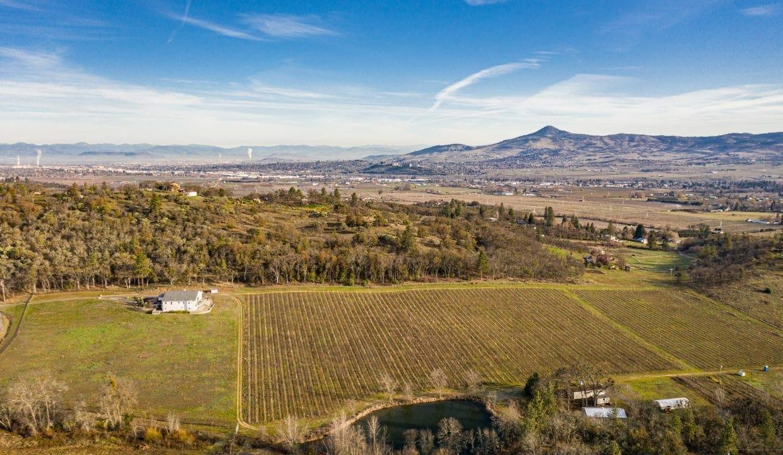 Pioneer-Road-Vineyard-Estate-Oregon-49