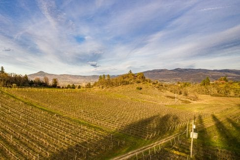 Pioneer-Road-Vineyard-Estate-Oregon-50