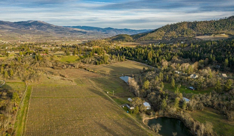 Pioneer-Road-Vineyard-Estate-Oregon-51