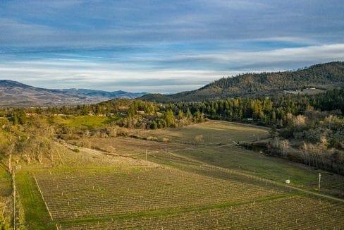 Pioneer-Road-Vineyard-Estate-Oregon-52
