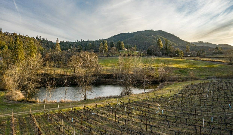 Pioneer-Road-Vineyard-Estate-Oregon-7