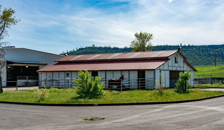 03 Horse Property (12)