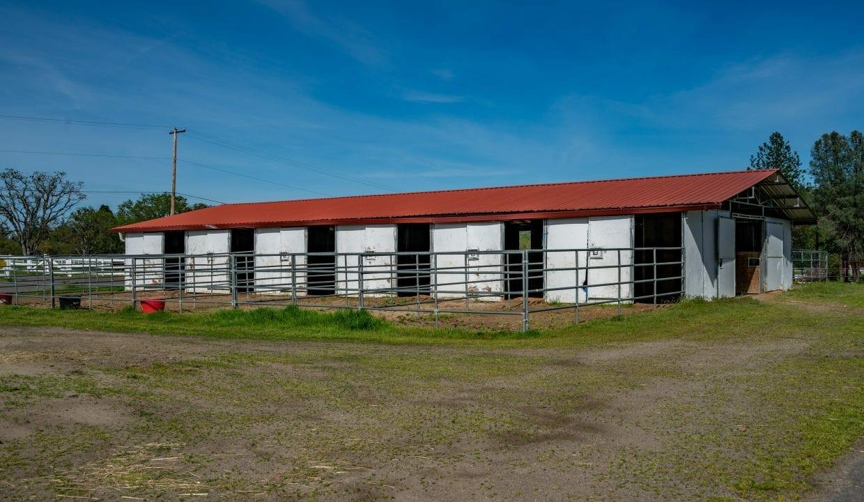 03 Horse Property (13)