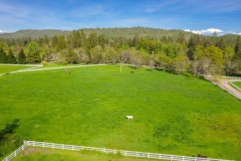 03 Horse Property (17)