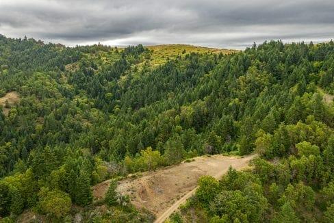 Beals Creek (9)