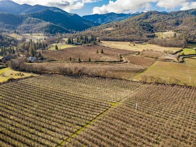 0 Beeson Lane Carolina West Orchard