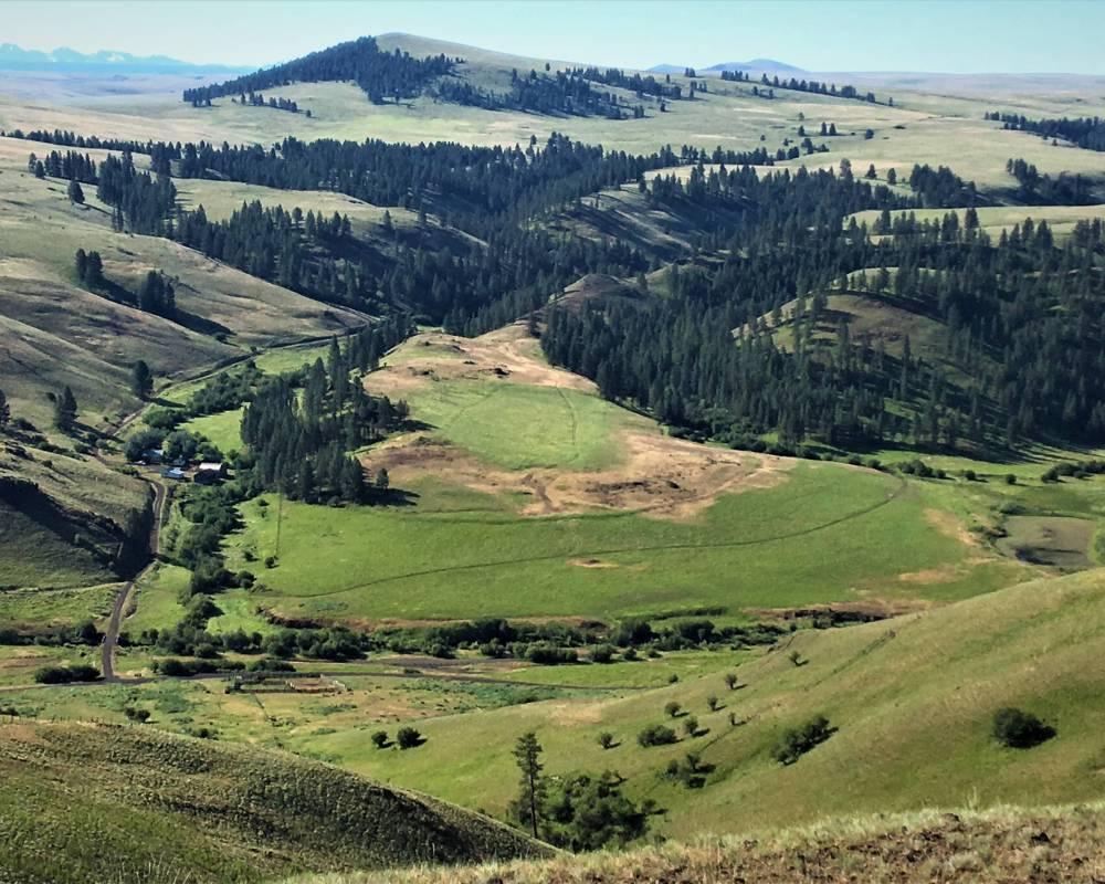Chesnimnus Creek Ranch