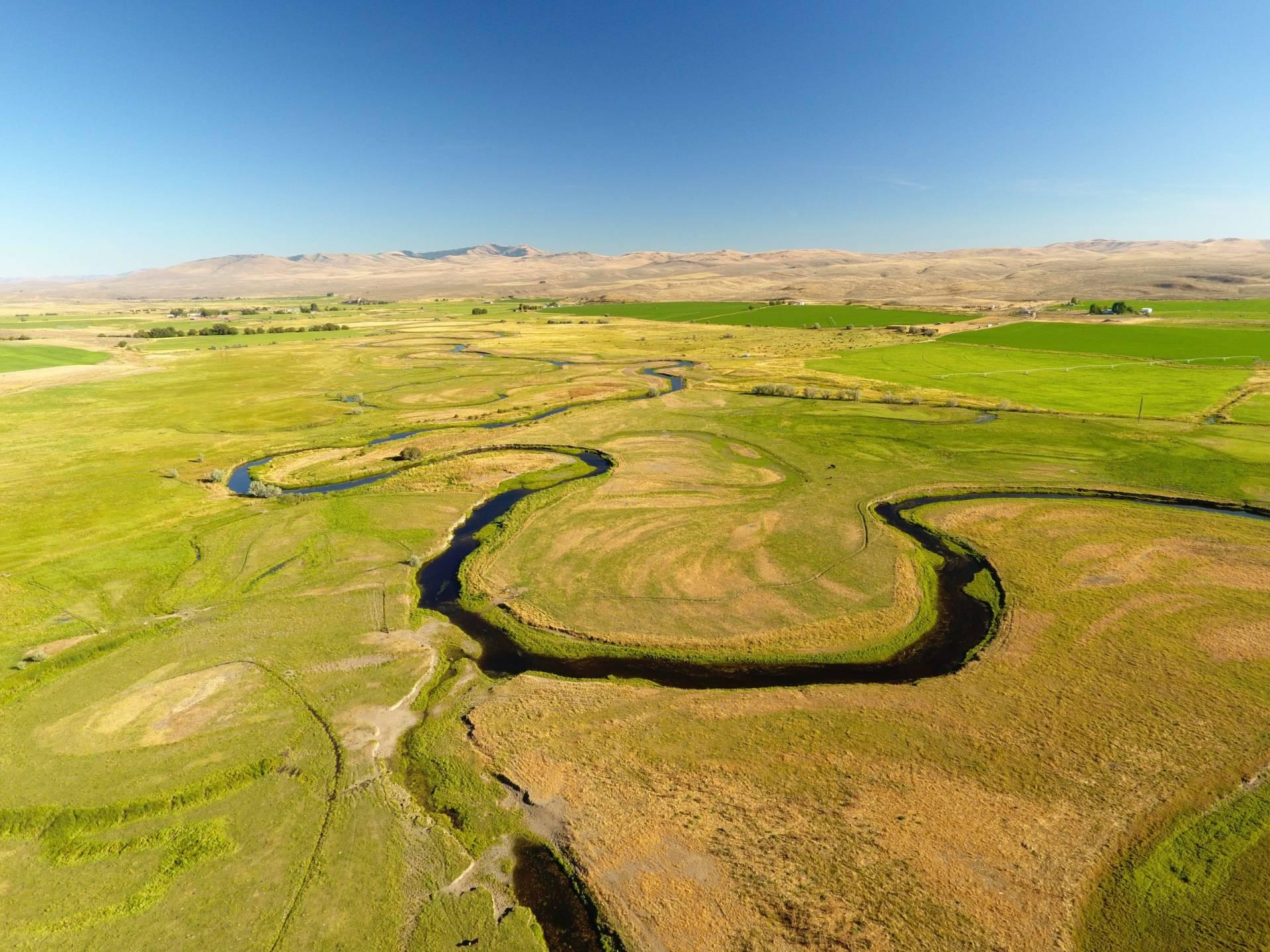 Meadow Grass River Ranch