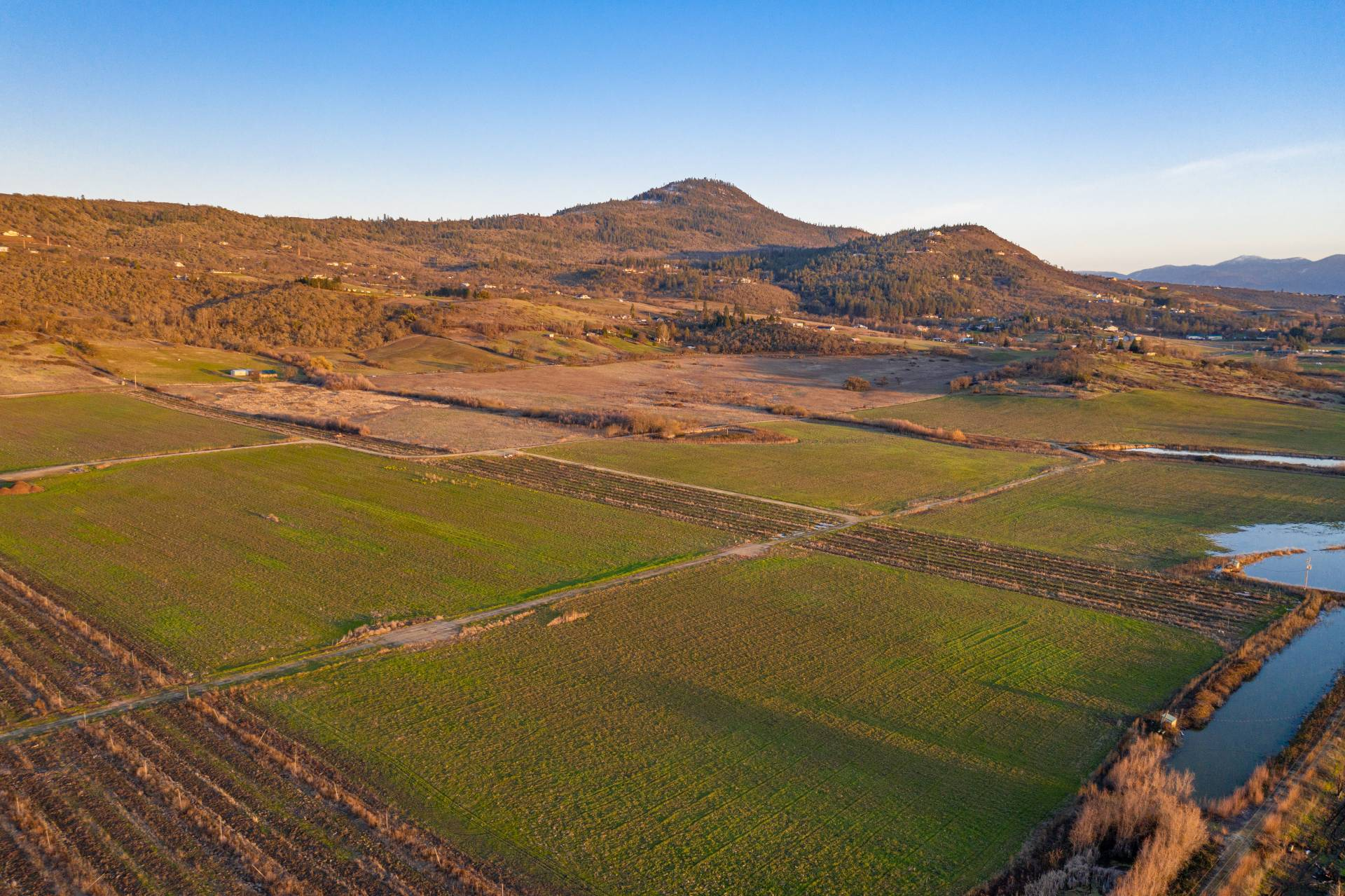 Foothills Irrigated Farm – South Offering