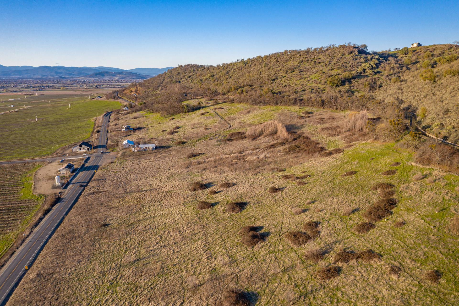 Foothills Irrigated Farm – East Offering
