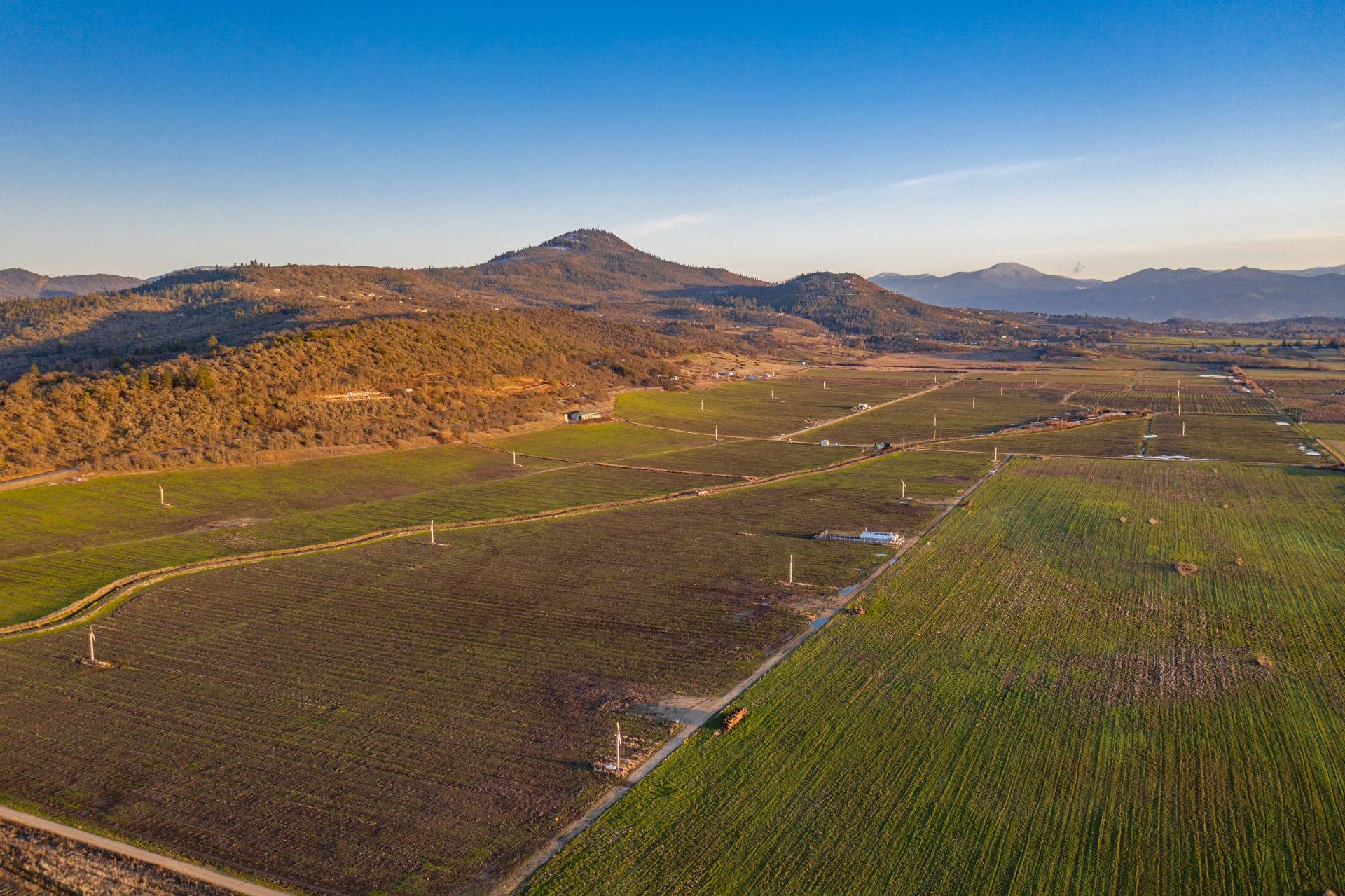 Foothills Irrigated Farm – North Offering