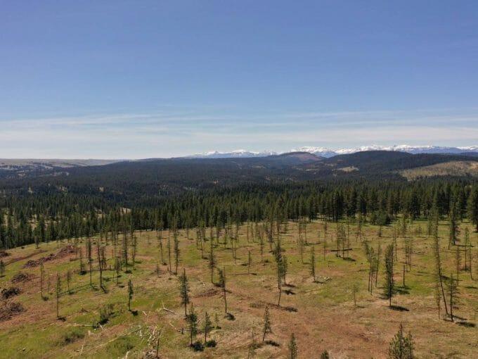 Blue Mountains 40 Enterprise Oregon