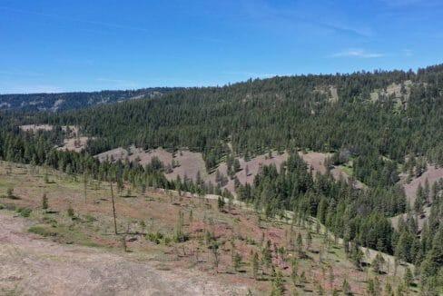 Blue Mountains 161 11
