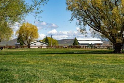 Board Ranch 1