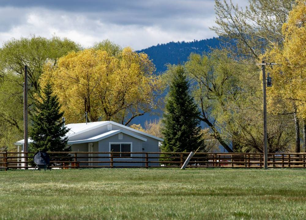 Board Ranch 3