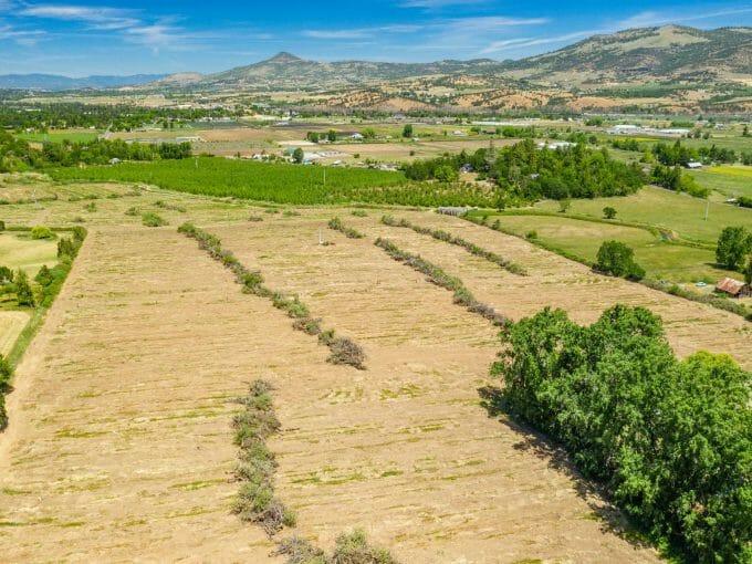 Wienecke Farm Talent Oregon
