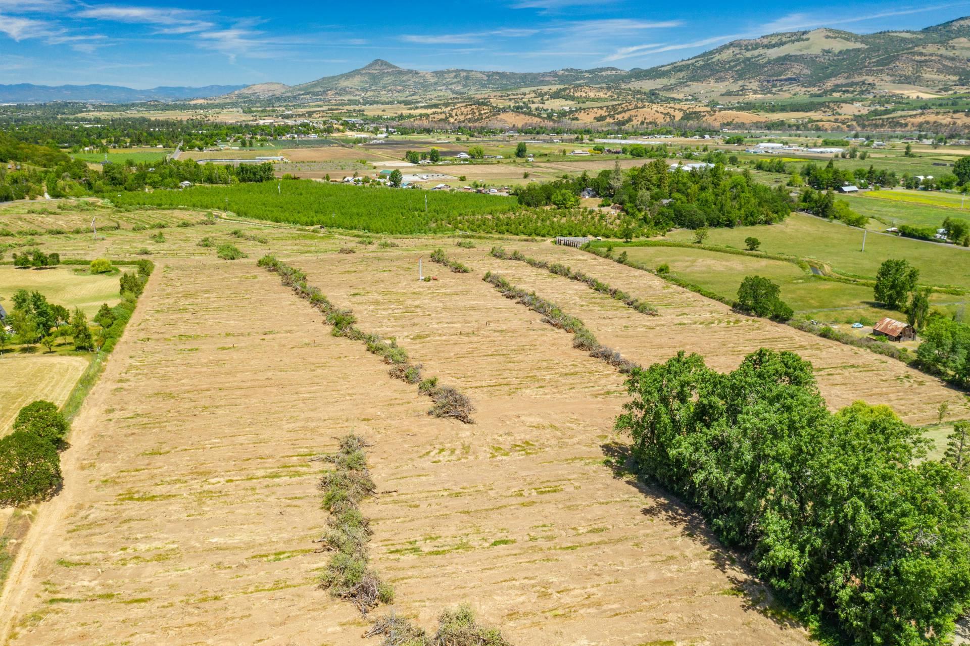 Wienecke Farm