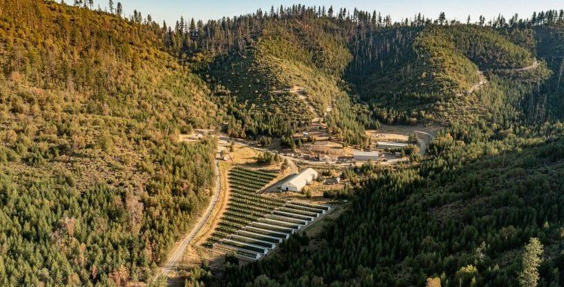 Woodrat Mountain Farms Jacksonville Oregon