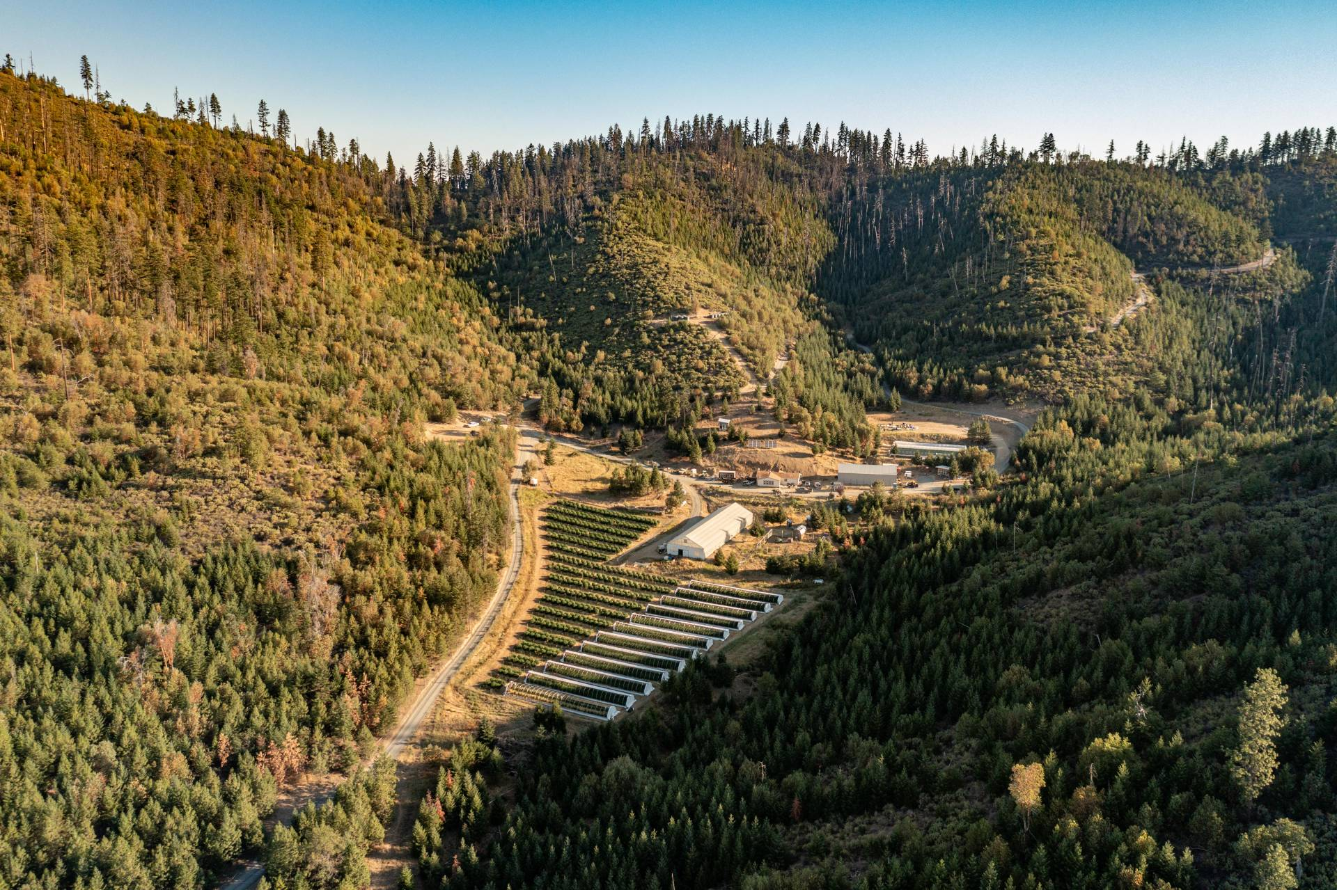 Woodrat Mountain Farms
