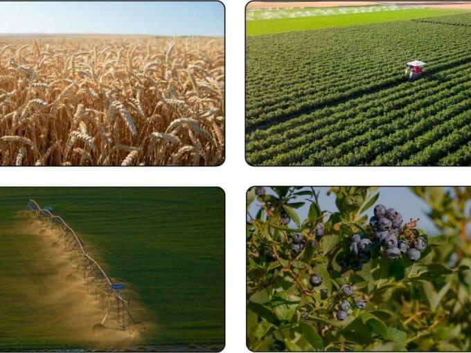 Columbia Basin Farmland Hermiston Oregon