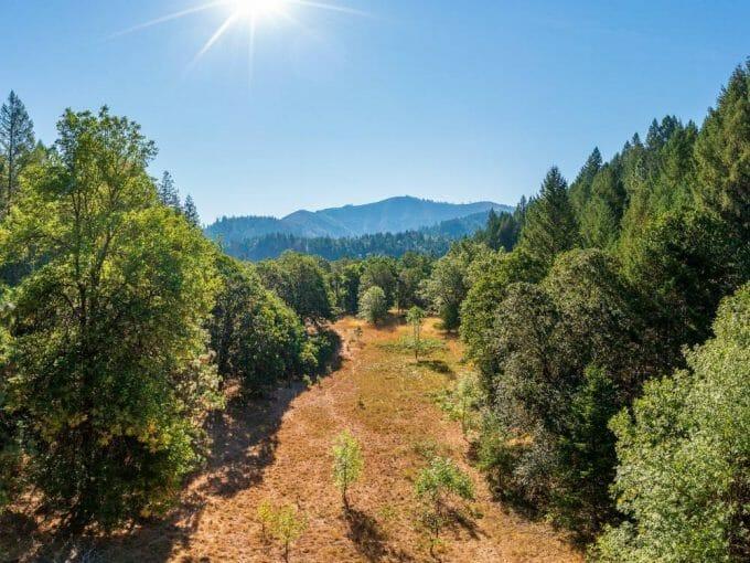 Redwood 40 Grants Pass Oregon