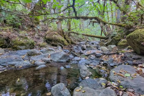 5Ditch Creek